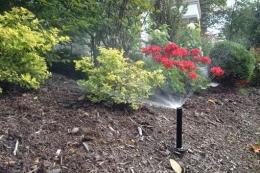 irrigation-system050